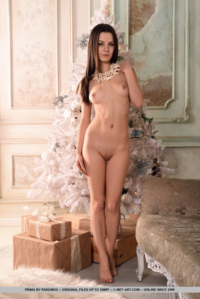 brunette Elegant sex nudes